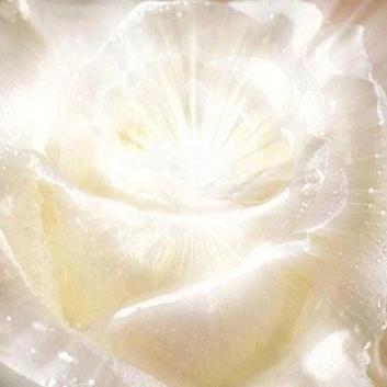 df63db6e5025405f8e911afc38191e31--higher-consciousness-chakra-healing