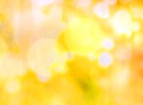 36058604655f06c58db25a79ee6117a5--garden-parties-yellow - Copy