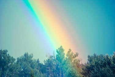 rainbow-sky-trees-82988