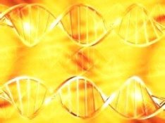 golden-dna1rot - copy