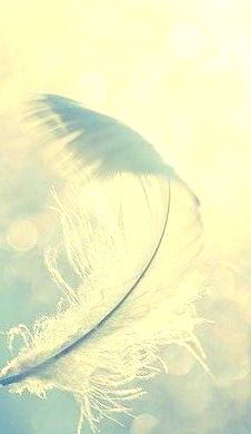 b6a6264833a5b459bbf99ca787c1513d--white-feathers-blue-feather - Copy - Copy