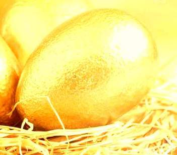 depositphotos_187598454-stock-photo-golden-eggs-nest-light-background - Copy